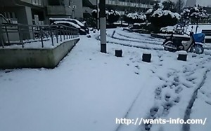 雪の中の新聞配達